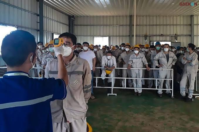 Akhir Juni 500 TKA Tiongkok Positif Masuk Indonesia