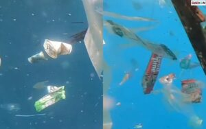Bikin Pilu, Lautan Ini Tercemari Banyak Sampah
