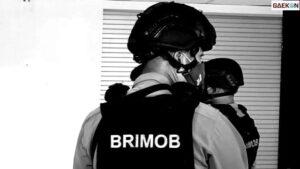 Hina Brimob Kacung Cina, Pemuda Ini Ditangkap Polisi