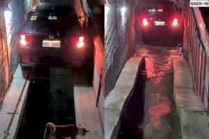 Ribet Amat, Pria Ini Habis Parkir Mobilnya Mesti Keluar Dari Pintu Bagasi