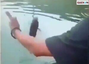 Super Cepat, Pria Ini Mancing Ikan Dalam Hitungan Detik