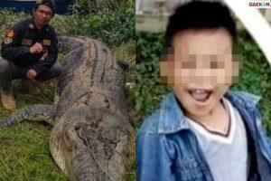 Bocah 8 Tahun Ini Jadi Korban Santapan Buaya Besar