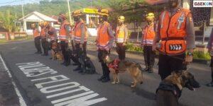 Bantu Temukan Korban Banjir NTT, BNPB Kerahkan Anjing Pelacak