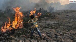 Hadapi Ancaman Karhutla, Riau Siapkan Aplikasi Mata Asap