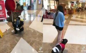 Anjing Masuk Mal, Petugas Kebersihan Mal Ini Bersihin Kotorannya