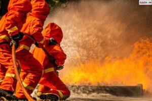 5 Ekor Kerbau Mati Terpanggang, Polisi Selidiki Kebakaran Kandang Kerbau Di Jepara