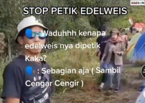 Nekat Petik Bunga Edelweis, Dua Sejoli Pendaki Gunung Ini Tak Boleh Mendaki 2 Tahun
