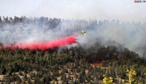 4 Kebakaran Lahan Di Wilayah Eshkol Akibat Luncuran Bola Api Dari Jalur Gaza