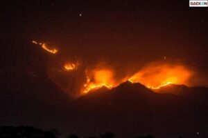 5 Hektare Lahan Lereng Gunung Puncak Habibie Terbakar
