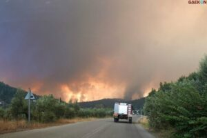 Kebakaran Hutan Terus Melanda, PM Yunani Menilai Musim Panas Di Yunani Kali Ini Mengerikan