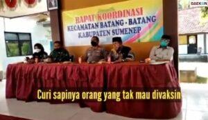 Heboh Camat Di Sumenep Suruh Kepala Desa Curi Sapi Warga Yang Tak Mau Divaksin, Begini Faktanya!