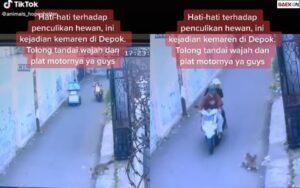 Terekam CCTV, 2 Pemuda Ini Nekat Curi Kucing Persia Di Depok