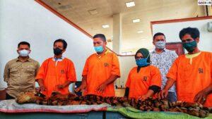 Polisi Sita Selembar Kulit Harimau Sumatra Utuh, 4 Tersangka Terancam 5 Tahun Penjara