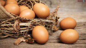 Dorong Presiden Lindungi Peternak Kecil, Peternak Di Blitar Bagi-Bagi Telur Dan Ayam Gratis Untuk Warga