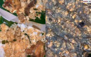 Bikin Merinding, Wanita Ini Temukan Kaki Seribu Dan Ulat Di Dalam Nasi Padangnya