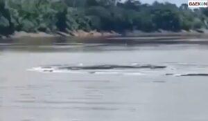 Diduga Tumpukan Sampah, Semburan Misterius Di Sungai Mahakam Hebohkan Warga