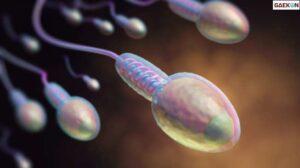 Campurkan Sperma Ke Makanan Istri Teman, Oknum Dokter Di Semarang Ditetapkan Tersangka
