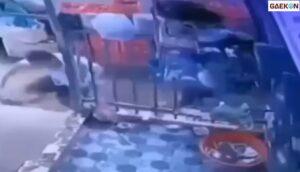 Dikejar Satpol PP, Wanita Ini Justru Bersembunyi Sambil Cuci Piring Di Rumah Orang